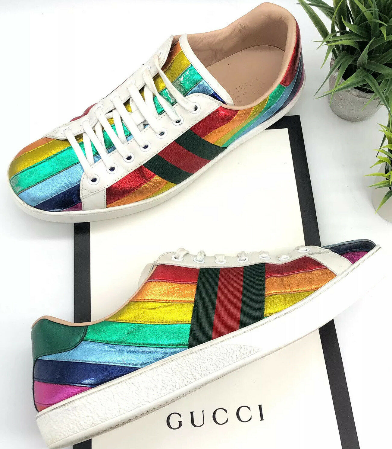 Gucci Ace Rainbow